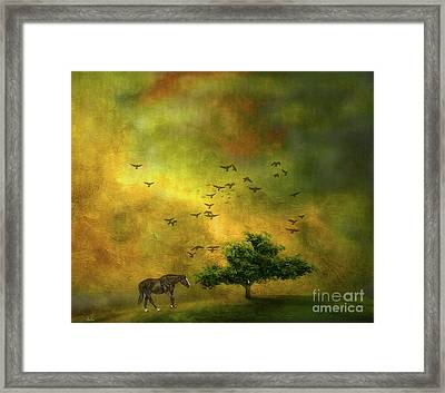Moody Country Landscape Framed Print