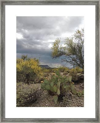 Moody Desert Framed Print