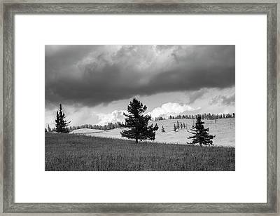 Moody Meadow, Tsenkher, 2016 Framed Print