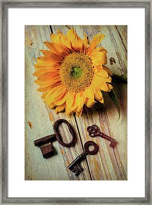Moody Sunflower With Keys Framed Print by Garry Gay