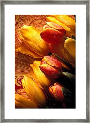 Moody Tulips Framed Print by Garry Gay