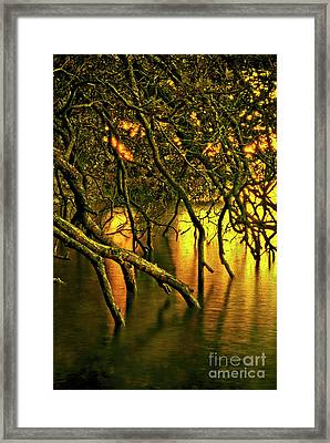 Moody Water Framed Print
