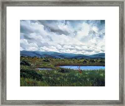 Moody Wetlands Framed Print by Laura Iverson