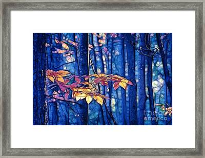 Framed Print featuring the photograph Moody Woods by Aimelle