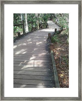 Mooloolaba Path Framed Print