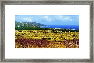 Moomomi Preserve Framed Print by James Temple