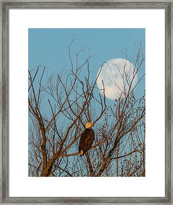 Moon And Eagle Vertical Framed Print by Marc Crumpler