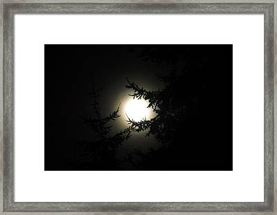 Moon And Trees Framed Print by Karen Molenaar Terrell
