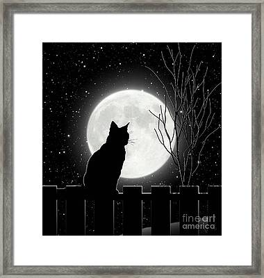 Moon Bath II Cat Contemplates The Full Moon Framed Print by Tina Lavoie