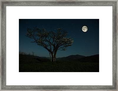 Moon Beams Framed Print by Stephanie Hensley