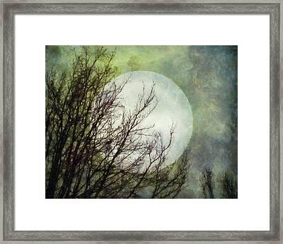 Moon Dream Framed Print by Patricia Strand