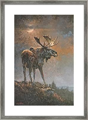 Moon Dusted Moose Framed Print