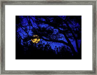 Moon Harvest Framed Print