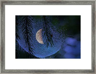 Moon In A Web Framed Print by Molly Dean