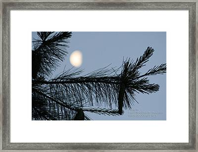 Moon In The Sky 1 Framed Print