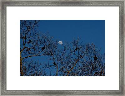 Moon In The Sky 3 Framed Print