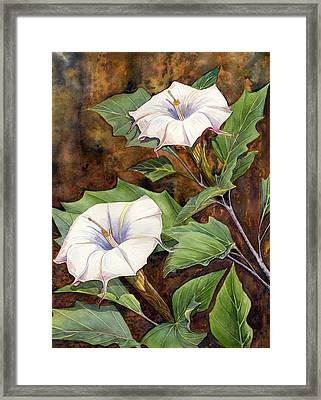 Moon Lilies Framed Print by Catherine G McElroy