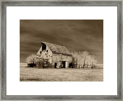 Moon Lit Sepia Framed Print by Julie Hamilton