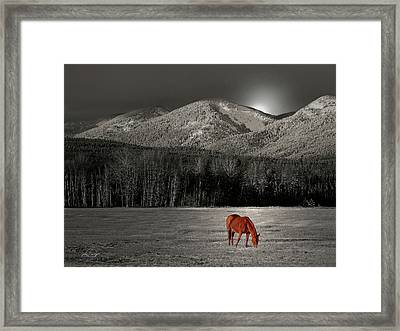 Moon Of The Wild Horse Framed Print
