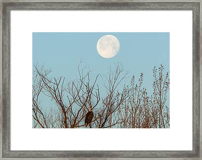 Moon Over Bald Eagle Framed Print by Marc Crumpler