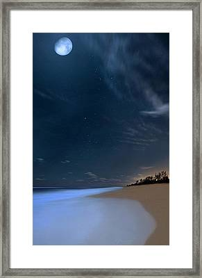 Moon Over Hobe Sound Beach Florida  Framed Print