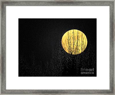 Moon Over The Trees Framed Print