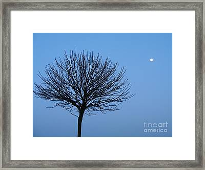 Moon Rise Framed Print by Michael Canning