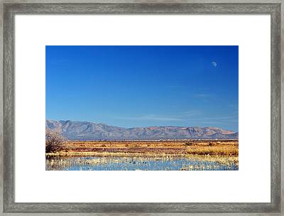 Framed Print featuring the photograph Moon Rising by Barbara Manis