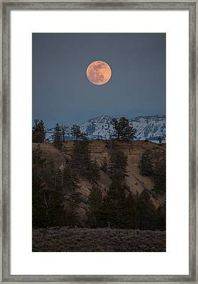 Moon Rising // Tower Junction, Yellowstone National Park Framed Print