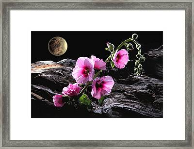 Moon Scape Framed Print by Manfred Lutzius