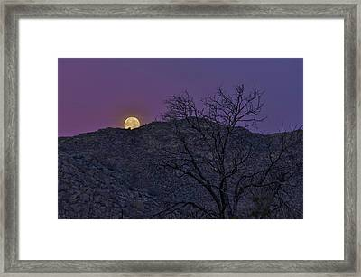 Moon Set At Sunrise Framed Print