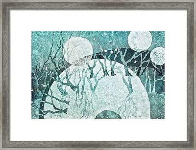 Moon Shadows Framed Print