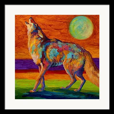 Coyote Framed Prints