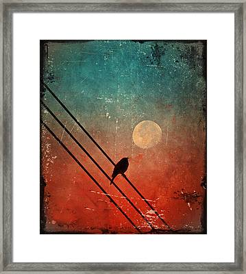 Moon Talk Framed Print by Tara Turner