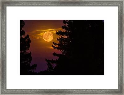 Moon View Framed Print by Garry Gay