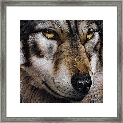 Moon Wolf Framed Print by Jurek Zamoyski