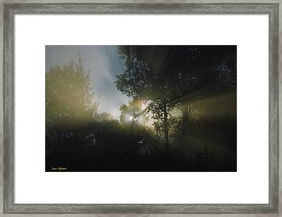 Moonbeams Framed Print