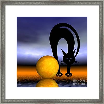 Mooncat's Play With The Fullmoon Framed Print