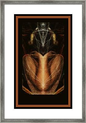 Mooneyham Framed Print by Pamela Patch