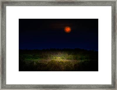 Moonglow II Framed Print