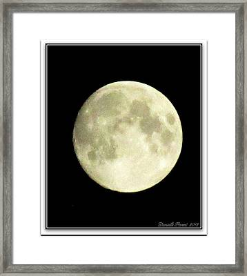 Moonlight  2nd Attempt  Framed Print by Danielle  Parent