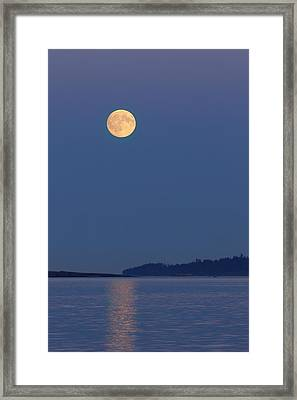 Moonlight - 365-224 Framed Print