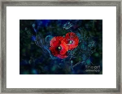 Moonlight Framed Print by Agnieszka Mlicka