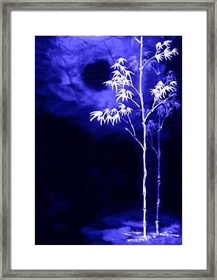 Moonlight Bamboo Framed Print