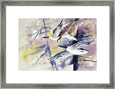 Moonlight Canadian Geese Framed Print
