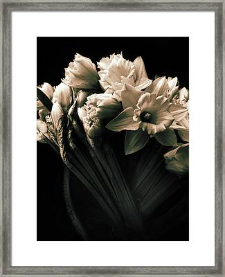 Moonlight Embrace Framed Print