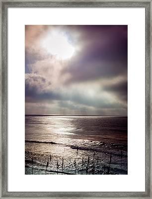 Moonlight Lullaby Framed Print