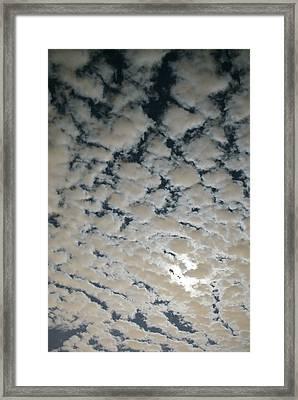 Moonlight Magic Framed Print by DiDi Higginbotham