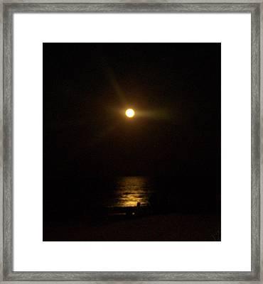 Moonlight Magic Framed Print by Patricia Taylor