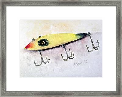 Moonlight Muskie Pikaroon Framed Print by Kathy Sturr